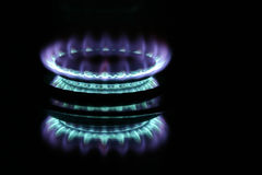 Gas Burner. Blue gas flame on stove royalty free stock image
