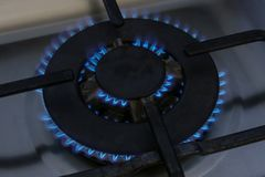 Gas burner flame at gas stove, close-up. Blue flame Stock Images