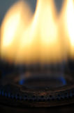 Gas burner flames. Yellow and blue colored gas burner flames royalty free stock photography