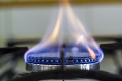 Gas burning from a kitchen gas stove.  stock photos