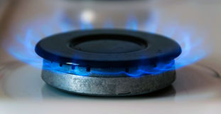 Gas burning. On the stove Royalty Free Stock Image