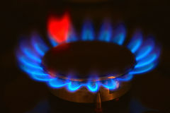 Gas burning on the stove. Burning gas stove hob blue flames close up in the dark on a black background Royalty Free Stock Photo