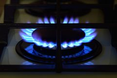 The gas burns on the stove Stock Photos
