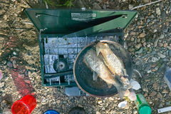 Gas camp stove and whole fish cooking in fry pan stock images