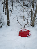 Gas can dumped in the forest. Gas can dumped in the wild forest in Sweden Royalty Free Stock Photography