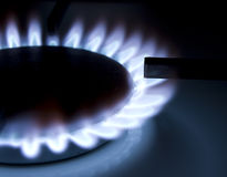 Gas coocker. Bluish flames of a gas stove burner Royalty Free Stock Images