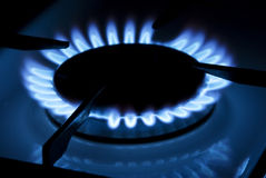 Gas cooker. Blue flame of the gas cooker royalty free stock photography