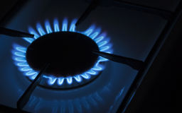 Gas cooker. Blue flame of the gas cooker stock image