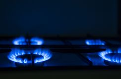Gas cooker. Torch of a gas cooker on kitchen stock photo