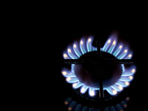 Gas cooker flame - hotplate, black background Stock Photos