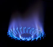 Gas flame. Blue gas stove flame on a black background Stock Images