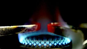 Gas flame burns stock video