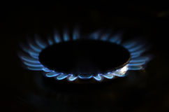 Gas flame on domestic stovetop Royalty Free Stock Image