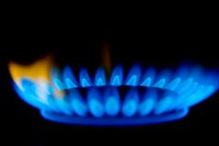 Gas Flames. Blue flames of a gas stove in the dark Royalty Free Stock Photo