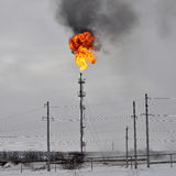 Gas flaring in the oil field. Bright torch flared gas on tower Stock Photos