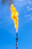 Gas flaring. Oil torch in the field against the blue sky Royalty Free Stock Photos