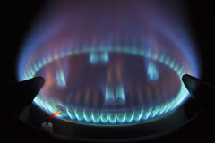 Gas hob against black background. Gas hob with blue coloured flame stock photo