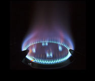 Gas hob against black background Stock Photography