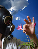 Gas mask. The man in a gas mask with flowers Royalty Free Stock Image