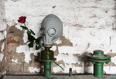 Gas Mask with Rose Stock Image