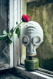 Gas Mask with Rose Stock Photo