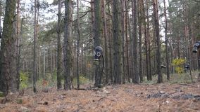 Gas masks in the forest among the trees. Horizontal pan and static images. Edited sequence. Full HD Video stock footage
