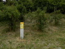 Gas post and bushes. Gas post and some bushes that are near my settlement Royalty Free Stock Image