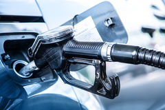 Gas station. Pumping the fuel diesel or petrol on gas station.  royalty free stock images