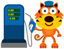 Gas station tiger Stock Photos