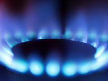 Gas stove blue flame Royalty Free Stock Images
