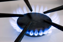Gas Stove Flame. The blue flame from a natural gas stove burner Royalty Free Stock Images