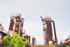 Gas Works Park In Sunny Day Almost Sunset, Seattle,Washington,USA. Royalty Free Stock Photo