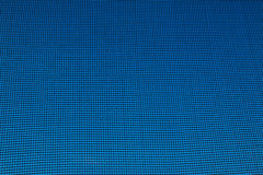 Gasa con el fondo azul Foto de archivo