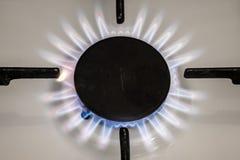 Gasherdflamme auf Küche Blaue Feuerflamme vom Ofen Stockfoto