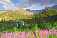 Gasienicowa Valley in Tatra Mountains, Poland Royalty Free Stock Photos