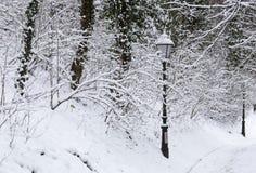 Gaslampen met sneeuw worden behandeld die stock fotografie