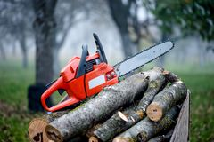 Gasoline powered professional chainsaw on pile of cut wood. Against foggy forest background Stock Photography