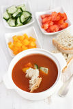 Gaspacho with bread and vegetables Stock Photography