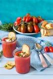 Gaspacho fresco della minestra del NO--cuoco fotografia stock