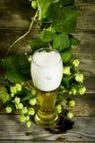 Gass av kallt öl med flygturer Arkivbilder