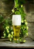 Gass av kallt öl med flygturer royaltyfri fotografi