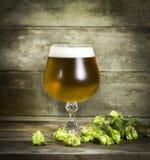 Gass av kallt öl med flygturer royaltyfria foton