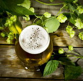 Gass of cold beer with hops Stock Image
