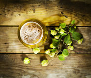 Gass of cold beer with hops Royalty Free Stock Photography