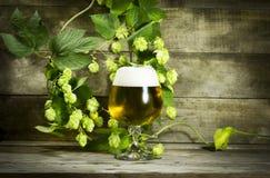 Gass de la cerveza fría con los saltos Foto de archivo