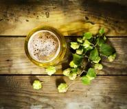 Gass van koud bier met hop Royalty-vrije Stock Fotografie