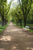 Gasse in den Schlossgärten Lizenzfreie Stockfotos