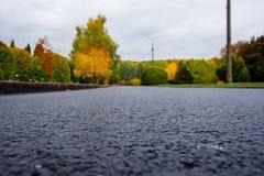 Gasse in einem allgemeinen Park mit Bänke und Laternen morgens Lizenzfreies Stockbild