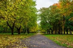 Gasse in einem allgemeinen Park mit Bänke und Laternen morgens Stockbilder