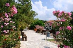 Gasse im Dorf, Zypern Lizenzfreies Stockfoto